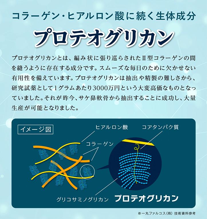 コラーゲン・ヒアルロン酸に続く生体成分 プロテオグリカン 軟骨の構成成分は、約70%が水分で、次にⅡ型コラーゲン、プロテオグリカンの順で多くを占めています。プロテオグリカンは、編み状に張り巡らされたⅡ型コラーゲンの間をぬうように存在し、極めて大きい保水力をもつことにより軟骨がその役割を果たすのに非常に重要な粘弾性といった物理特性を与えています。