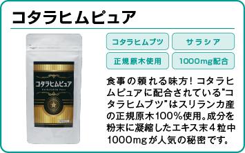 TOP_コタラヒムピュア